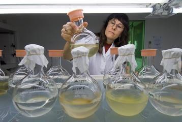 chimie verte increase